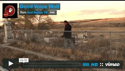 Good Voice Wolf